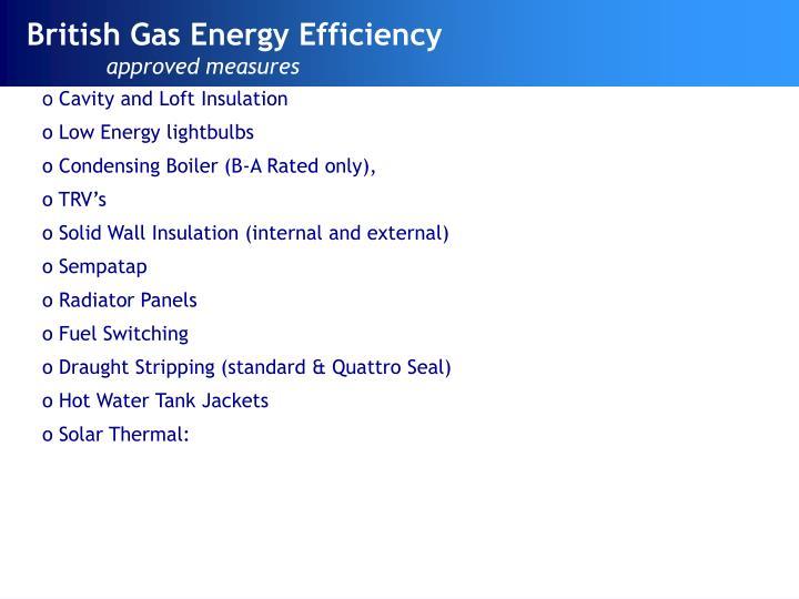 British Gas Energy Efficiency