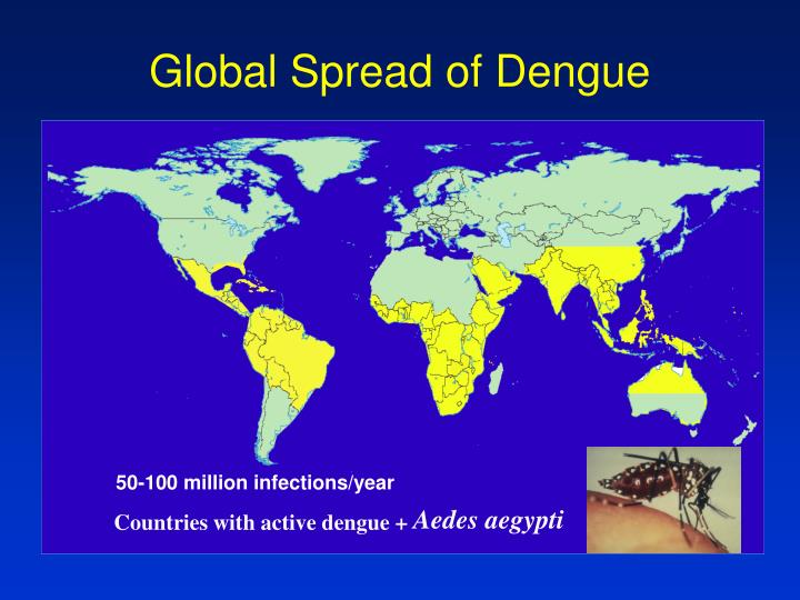 Global Spread of Dengue