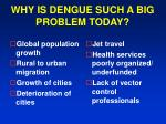 why is dengue such a big problem today