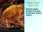 black death 1347 1351