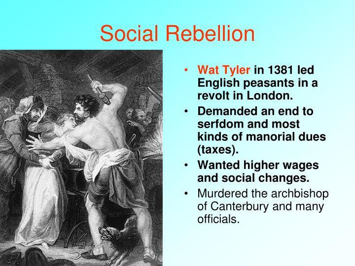 Social Rebellion