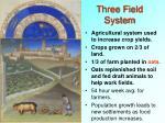 three field system