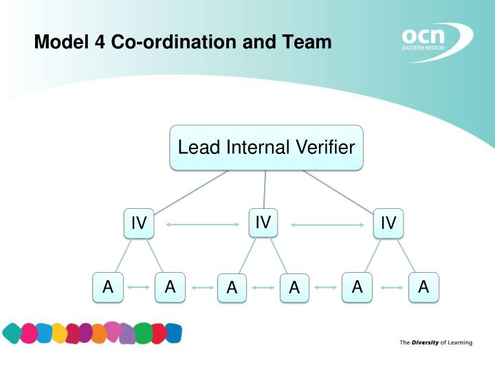 Model 4 Co-ordination and Team