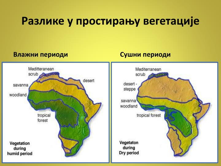 Разлике у простирању вегетације