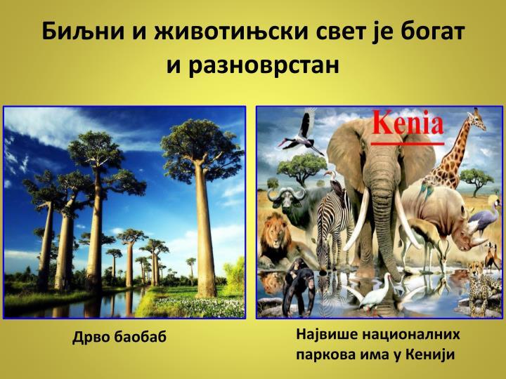 Биљни и животињски свет је богат и разноврстан