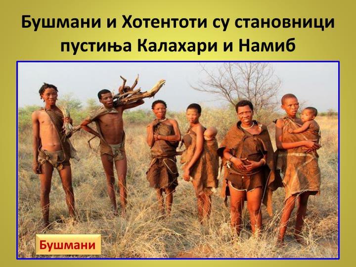 Бушмани и Хотентоти су становници  пустиња Калахари и Намиб