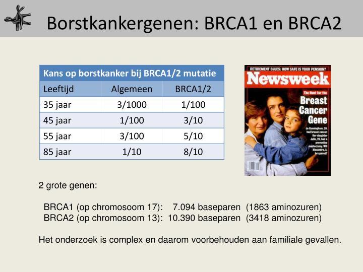 Borstkankergenen: BRCA1 en BRCA2