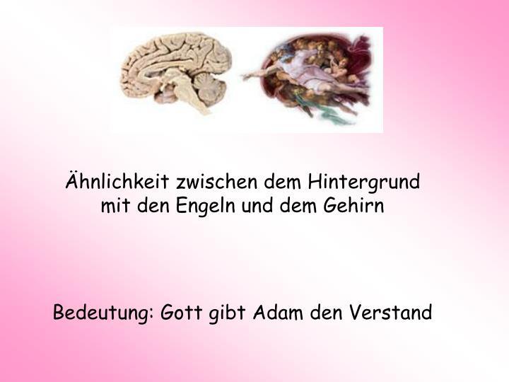 Ähnlichkeit zwischen dem Hintergrund mit den Engeln und dem Gehirn