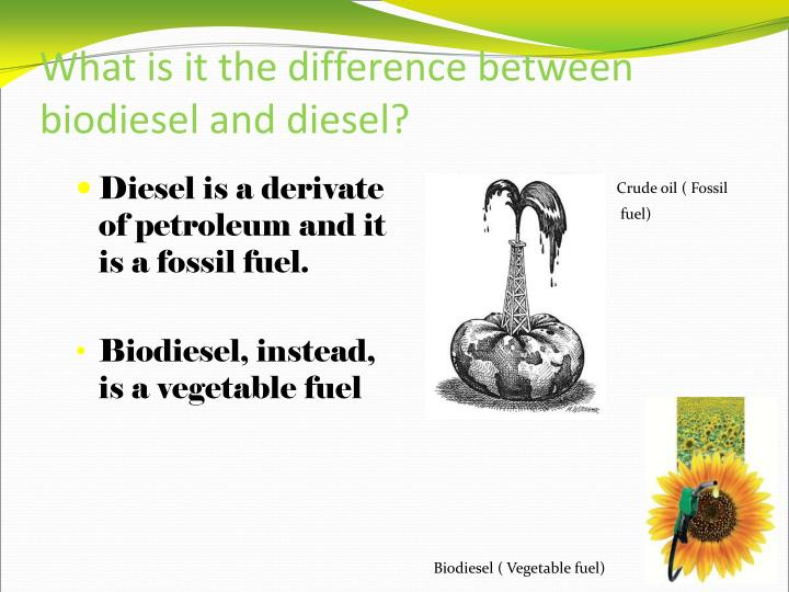 What is it the difference between biodiesel and diesel?