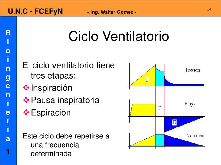 Ciclo Ventilatorio