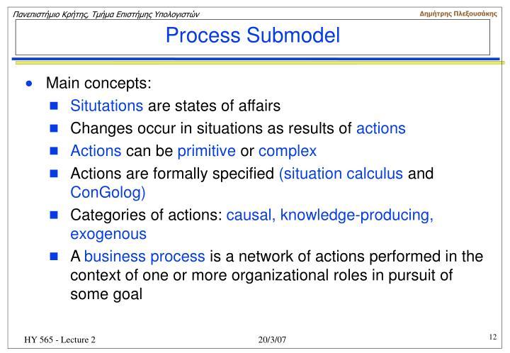Process Submodel