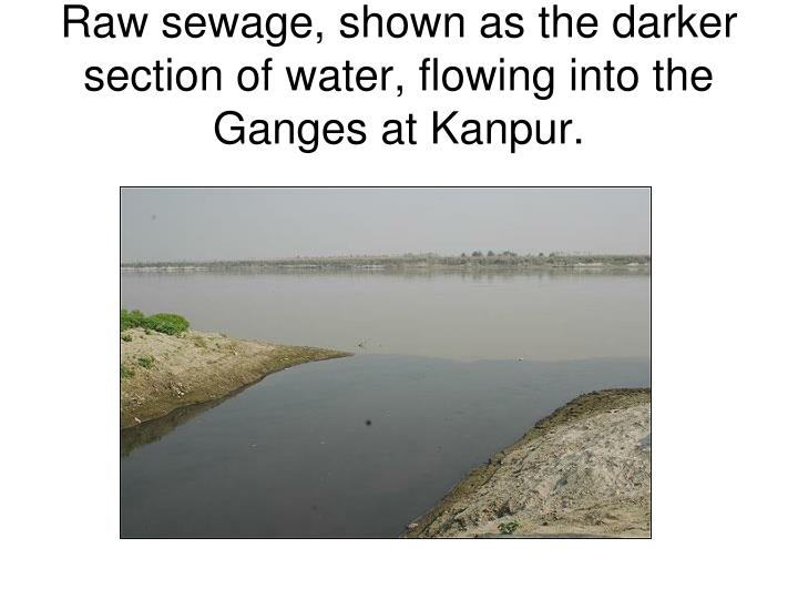 Raw sewage, shown as the darker section of water, flowing into the Ganges at Kanpur.