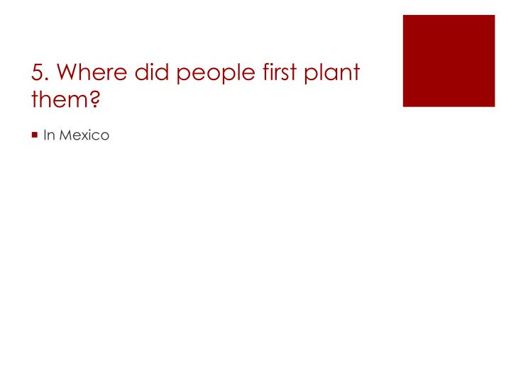 5. Where did people first plant them?