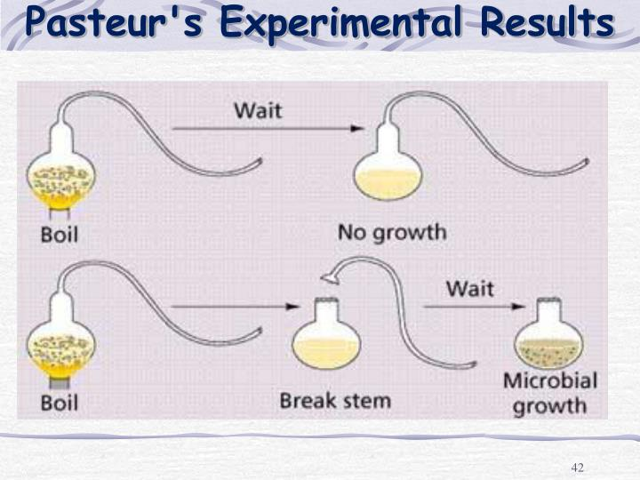 Pasteur's Experimental Results