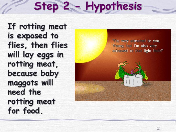 Step 2 - Hypothesis