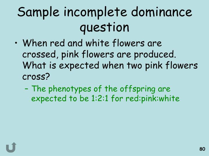 Sample incomplete dominance question