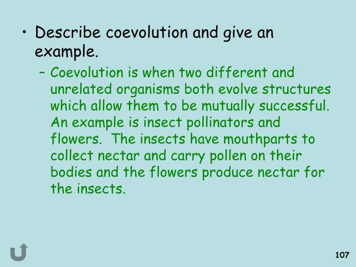 Describe coevolution and give an example.