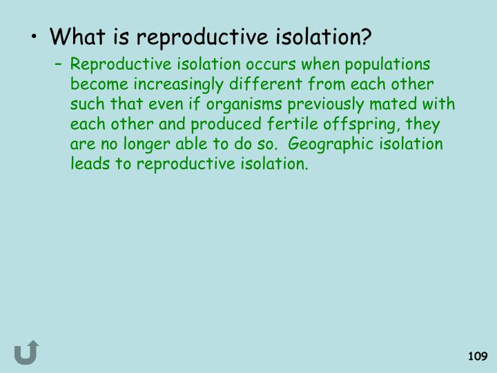 What is reproductive isolation?