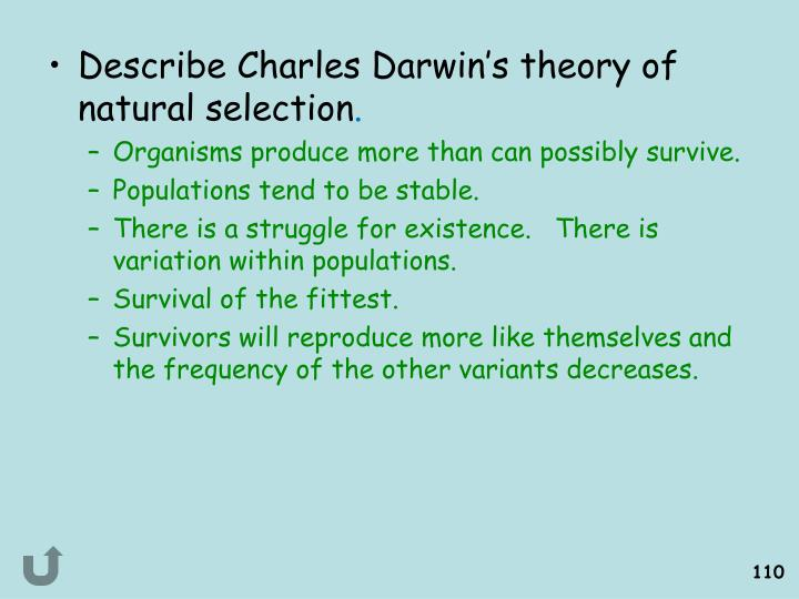 Describe Charles Darwin's theory of natural selection