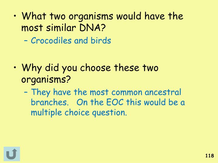 What two organisms would have the most similar DNA?