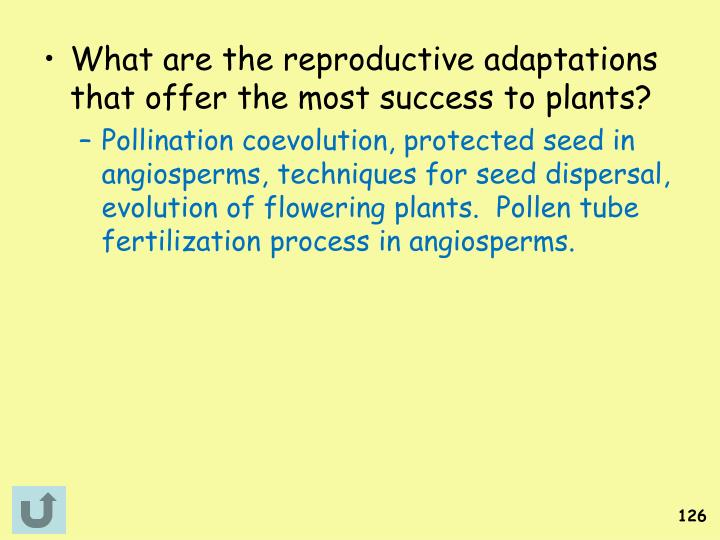 What are the reproductive adaptations that offer the most success to plants?