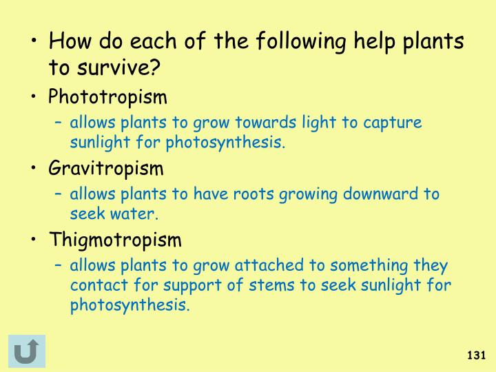 How do each of the following help plants to survive?