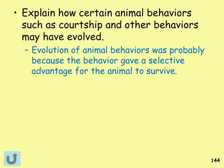 Explain how certain animal behaviors such as courtship and other behaviors may have evolved.