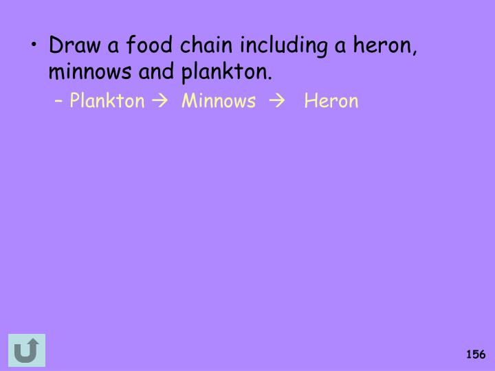 Draw a food chain including a heron, minnows and plankton.
