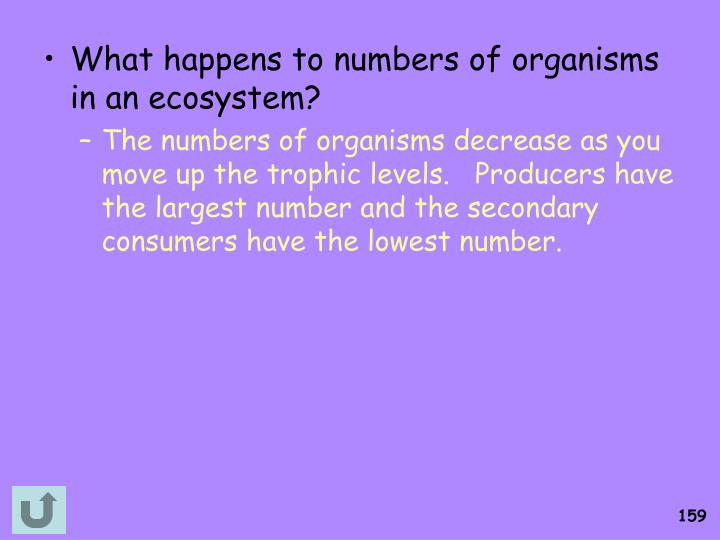 What happens to numbers of organisms in an ecosystem?
