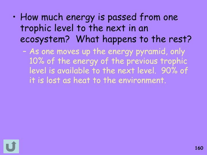 How much energy is passed from one trophic level to the next in an ecosystem?  What happens to the rest?