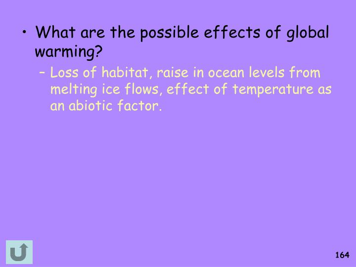 What are the possible effects of global warming?