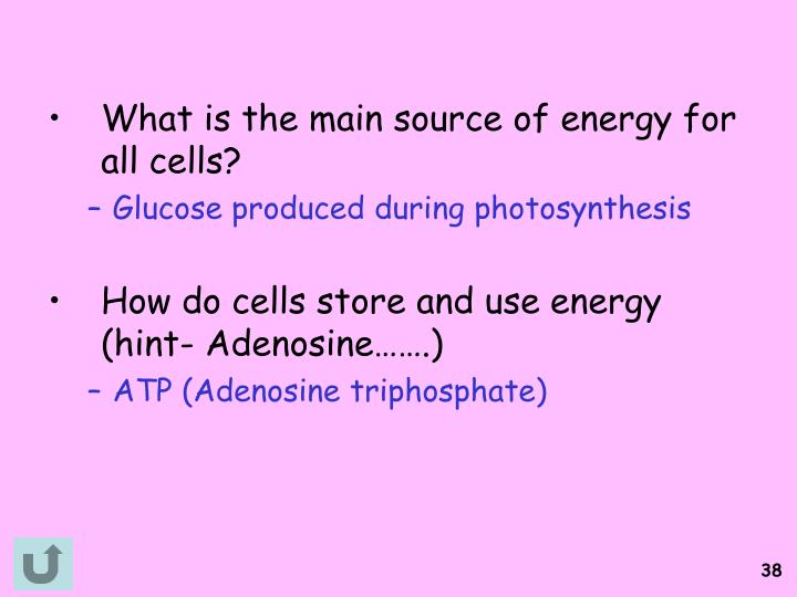 What is the main source of energy for all cells?
