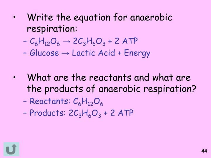 Write the equation for anaerobic respiration: