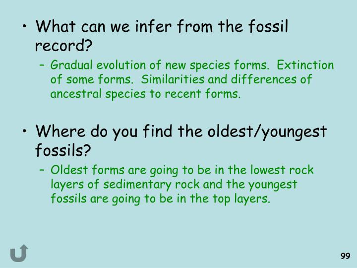What can we infer from the fossil record?