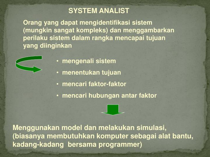 SYSTEM ANALIST