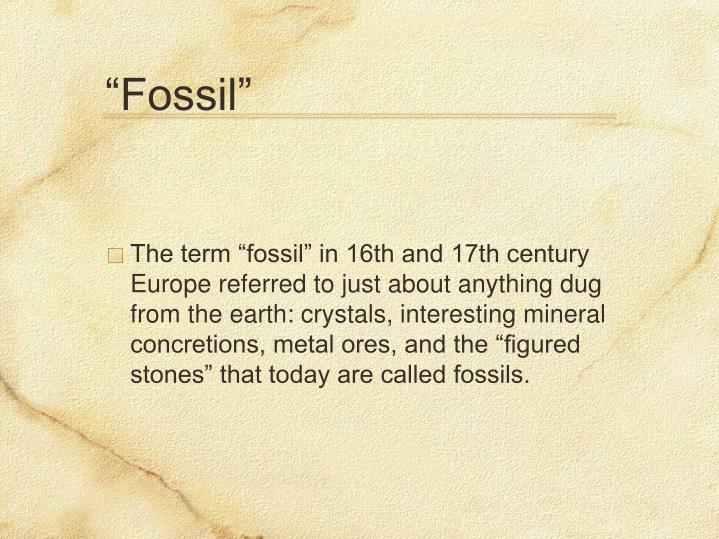 """""""Fossil"""""""