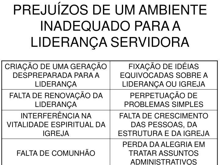 PREJUÍZOS DE UM AMBIENTE INADEQUADO PARA A LIDERANÇA SERVIDORA