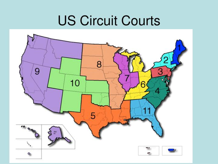 US Circuit Courts