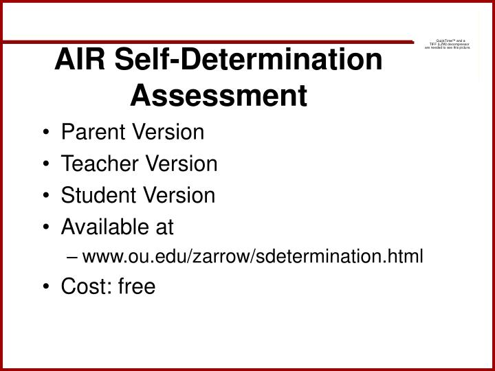 AIR Self-Determination Assessment
