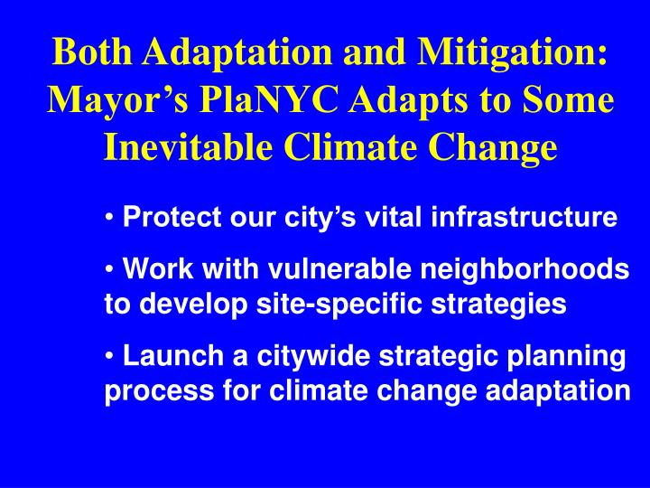 Both Adaptation and Mitigation: