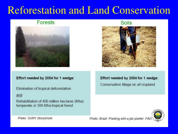 Reforestation and Land Conservation