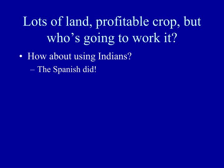 Lots of land, profitable crop, but who's going to work it?