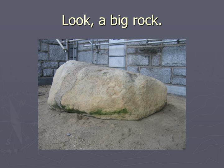 Look, a big rock.