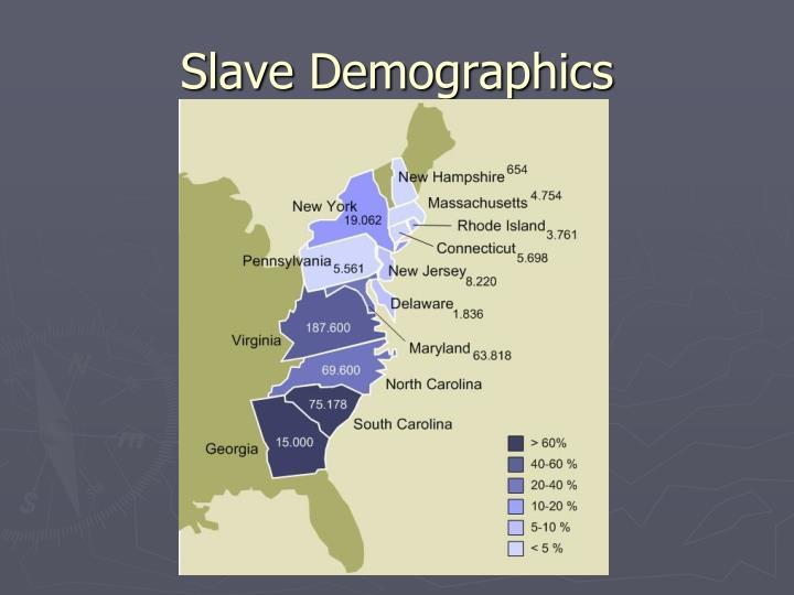 Slave Demographics