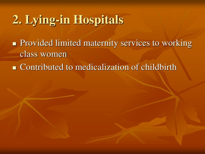 2. Lying-in Hospitals
