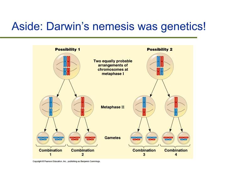Aside: Darwin's nemesis was genetics!