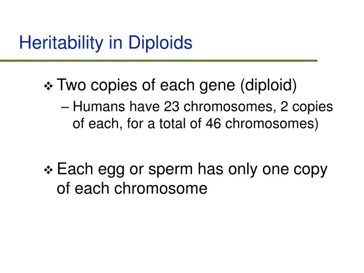 Heritability in Diploids