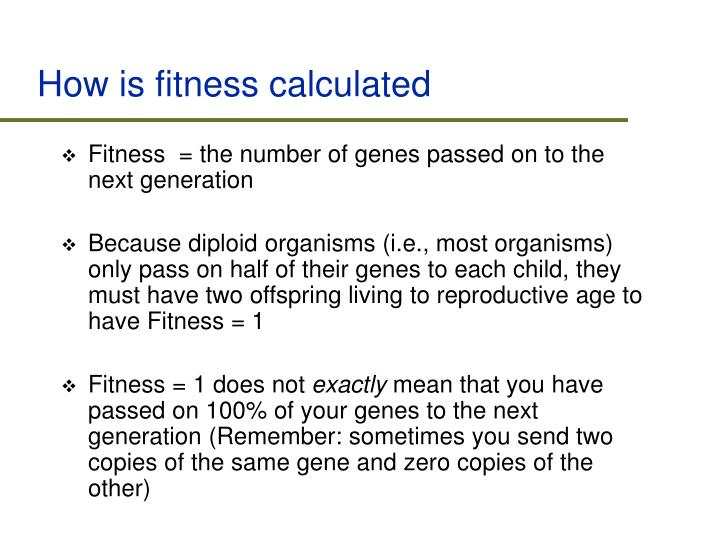 How is fitness calculated