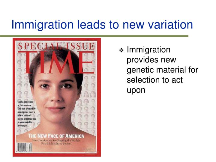 Immigration leads to new variation