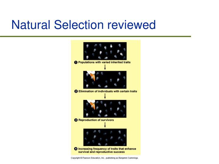 Natural Selection reviewed